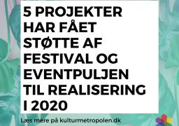 pulje festival og events